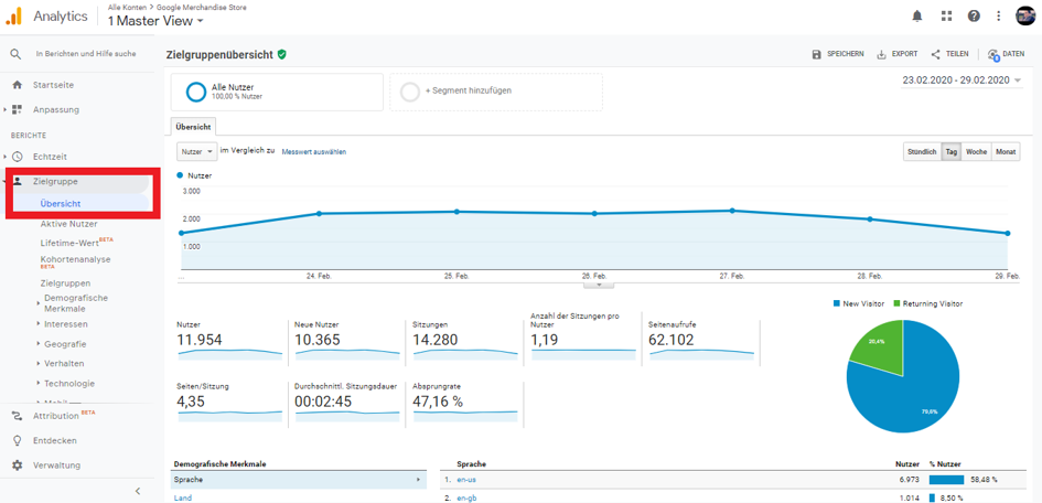Zielgruppe Dashboard Google Analytics